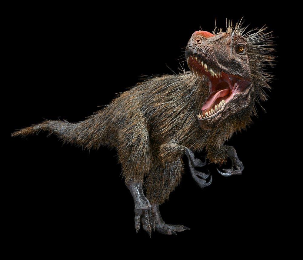 01-feathered-dinosaur.jpg