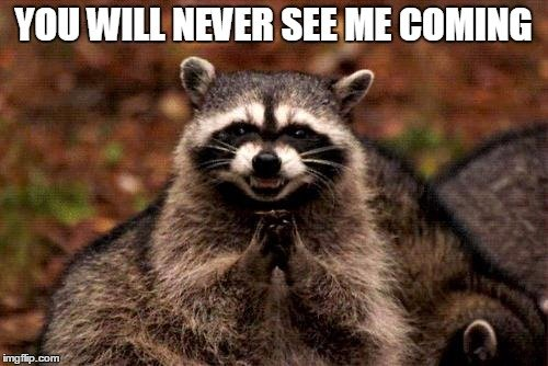 Evil Plotting Raccoon Meme - Imgflip