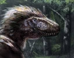 Image result for feathered triceratops