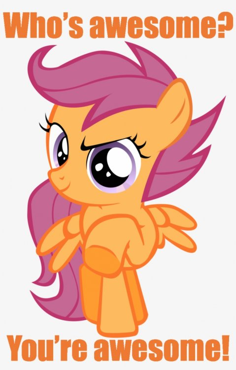 Image result for MLP you're awesome