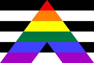 Image result for straight ally flag