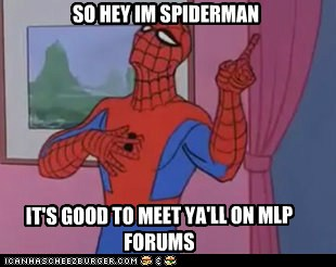 Seems Legit Spiderman
