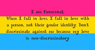 Pansexual mean