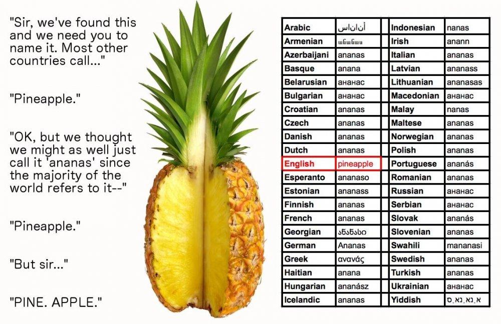 Pineapple.thumb.jpg.9d1c3f4ad974971774ae9a4ec6d1eb55.jpg