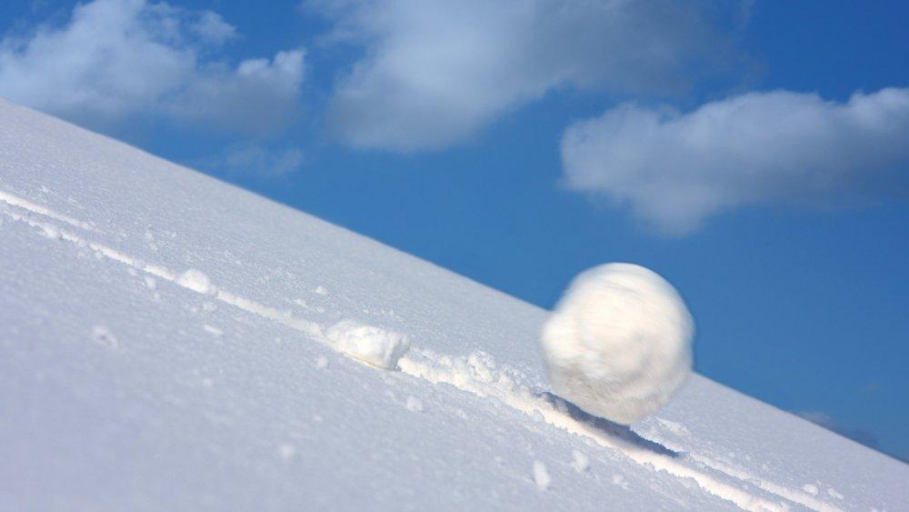snowball_marquee.thumb.jpg.1032cdf170f406d3e416994da4a0946d.jpg