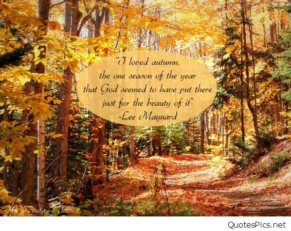 The-best-fall-quotes.-This-quote-from-Lee-Maynard-about-autumn-is-so-beautiful.2.jpg.97e04362bc5e5130140a3283c74db92f.jpg