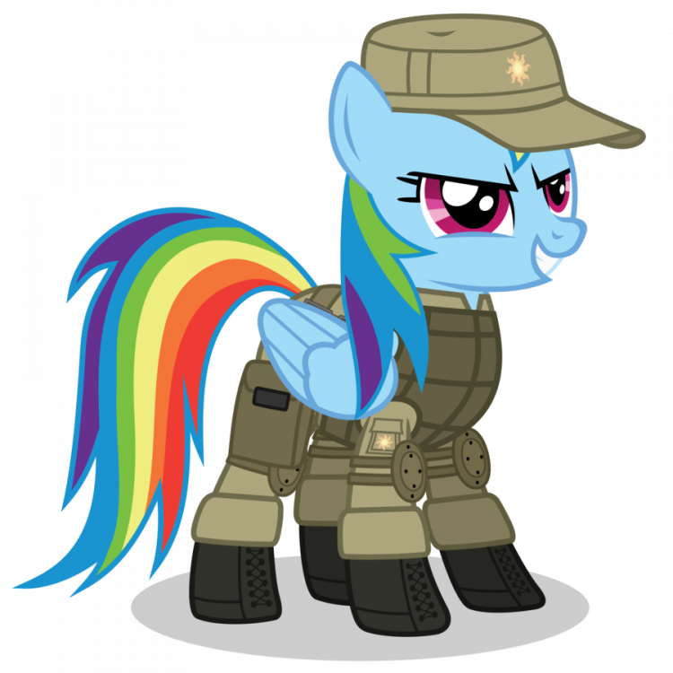 rainbow_dash___scat___armor_by_dolphinfox-d5nw5sf.png