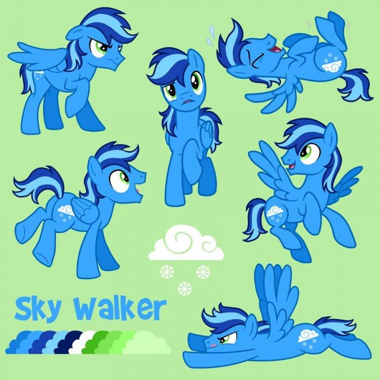 Sky Walker final low-res.jpg