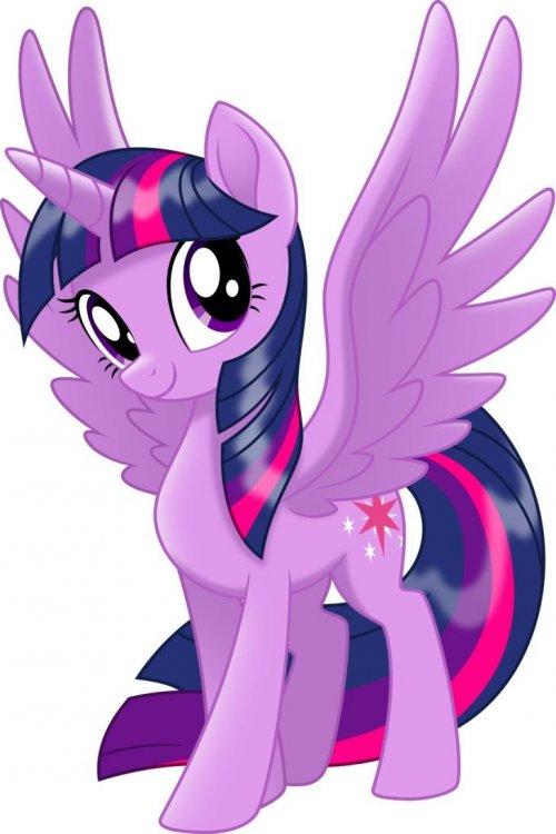 8cdc40c3cfef831ac1e11943bb0950ad--princess-twilight-sparkle-mlp-twilight.jpg