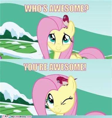new-mlp-fluttershy-meme-my-little-pony-meme-fluttershy-mlp-fluttershy-meme.jpg.ecabefae7e3d8f5f81f698eb636645be.jpg