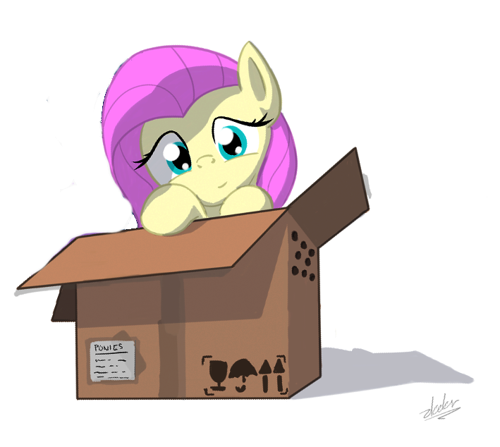 568456891_3635__safe_artist-colon-zlack3r_fluttershy_twilightsparkle_box_cardboardbox_duo_female_mare_pegasus_pony_ponyinabox_simplebackground_unicorn_whit.png.80315751657869c005ca4f6c8d514242.png