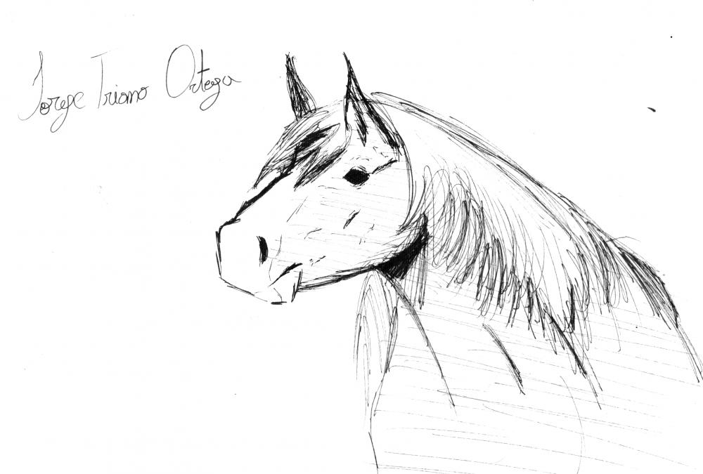 horse.thumb.png.cb29ab3fa96e6dfd2747a74d148e3d58.png