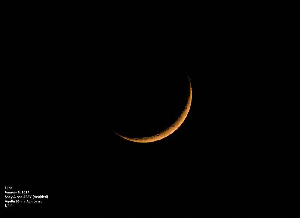 Crescent Moon_1-8-2019.jpg