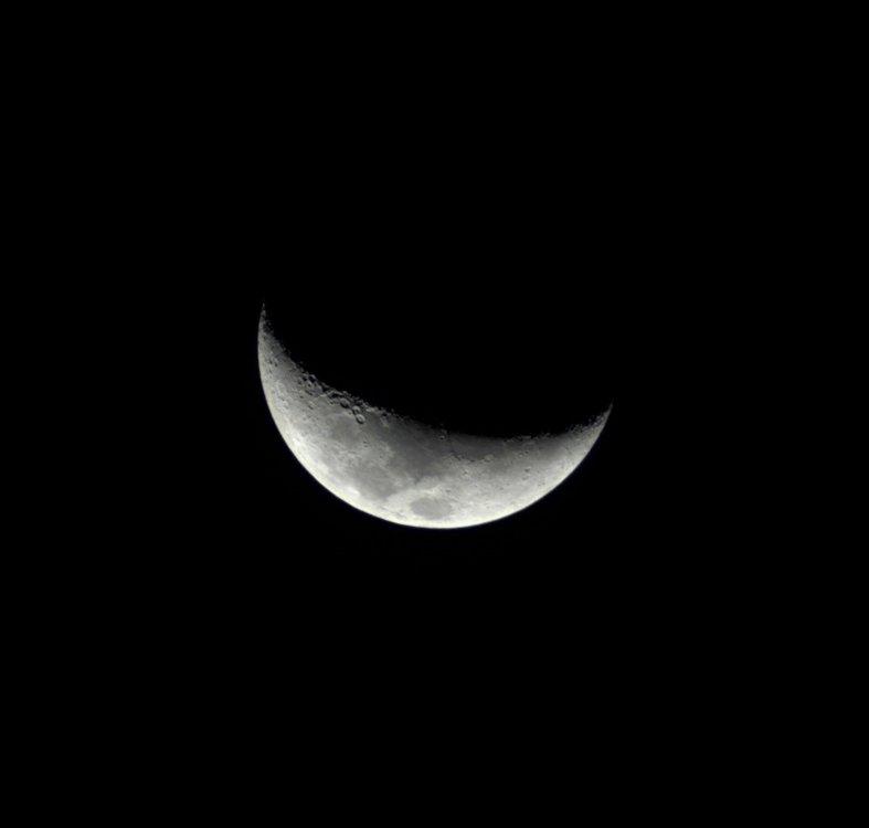 Luna_1-11-2019 (1).jpg