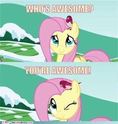 new-mlp-fluttershy-meme-my-little-pony-meme-fluttershy-mlp-fluttershy-meme.jpg.ecabefae7e3d8f5f81f698eb636645be_2.jpg.8d21f8b1619d1e919cb8bfdce02aec4f.jpg