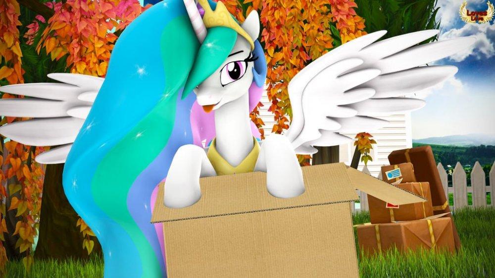 princess_in_the_box__by_loveslove_dcwypwj-fullview.thumb.jpg.d3e0e4873f103f6ba5a80c903c13d0fa.jpg