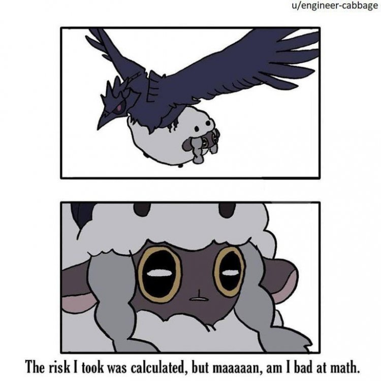 funny-wooloo-meme-that-says-the-risk-i-took-was-calculated-but-maaaan-am-i-bad-at-math.jpg