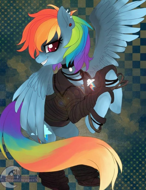 rainbows_rock_by_xxmoondropsxx_d7t89yw-pre.thumb.jpg.e88ab93e02b6b704cd9d7ec2715c85ab.jpg