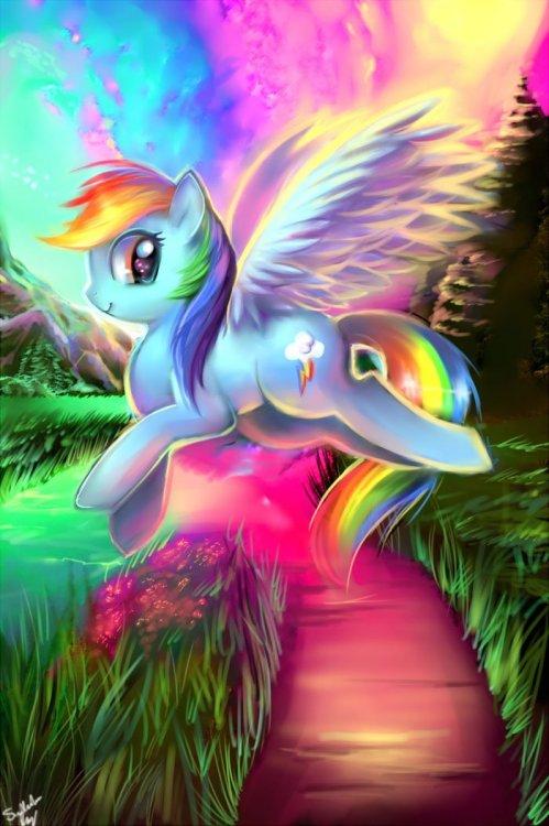 rainbow_dash_by_sukesha_ray_d67kiid.thumb.jpg.20fb85f8ff1d1f1bfcf4983adbf094a3.jpg