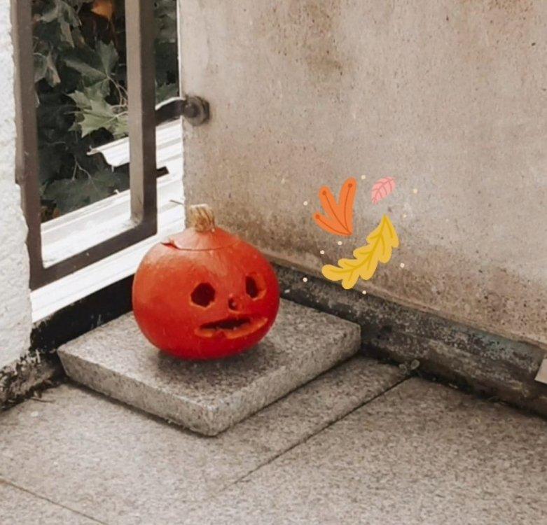 pumpkin.thumb.jpg.5397d02c2e2df0f9774540c76f897110.jpg