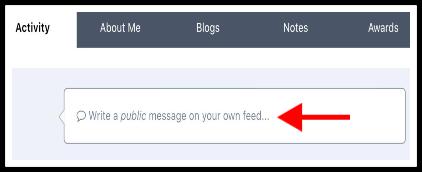 Make a public status update edited.jpg