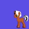 Gommah Pony