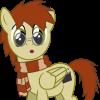 Stallion Hoovrick