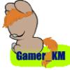 Gamer_KM