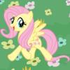 Fluttershyy